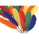 RVFM Assorted Coloured Duck Quills 18cm/20g Bag