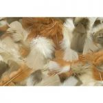 RVFM Natural Feathers