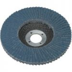 Sealey FD10040 Flap Disc Zirconium Ø100mm 16mm Bore 40grit